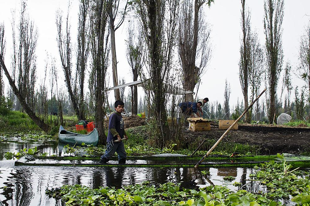chinampas xochimilco - photo #7
