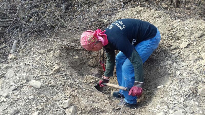 Hallan 12 cuerpos en tres fosas clandestinas en Guerrero