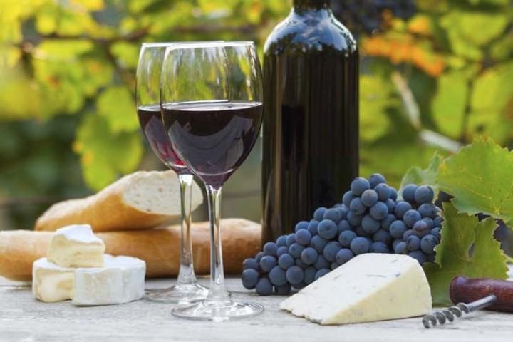 México busca crecer en la industria vitivinícola como Chile y Argentina