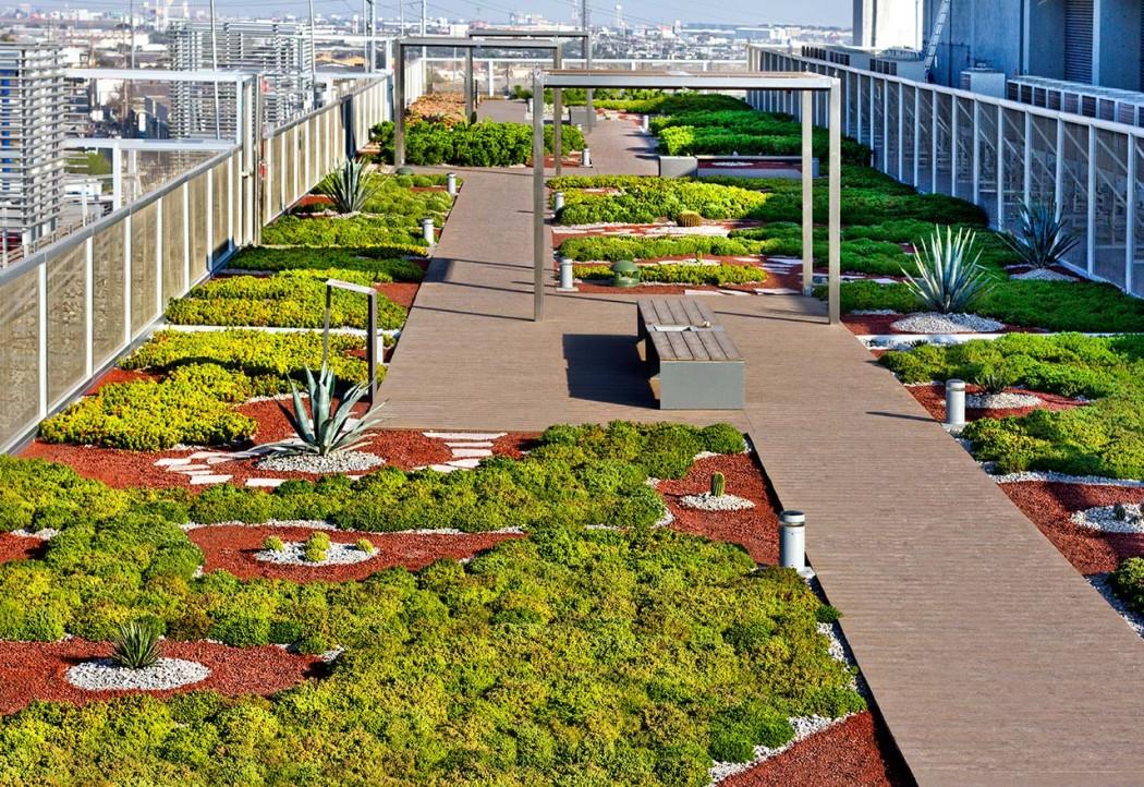Azoteas verdes: un oasis de vida en ciudades de concreto