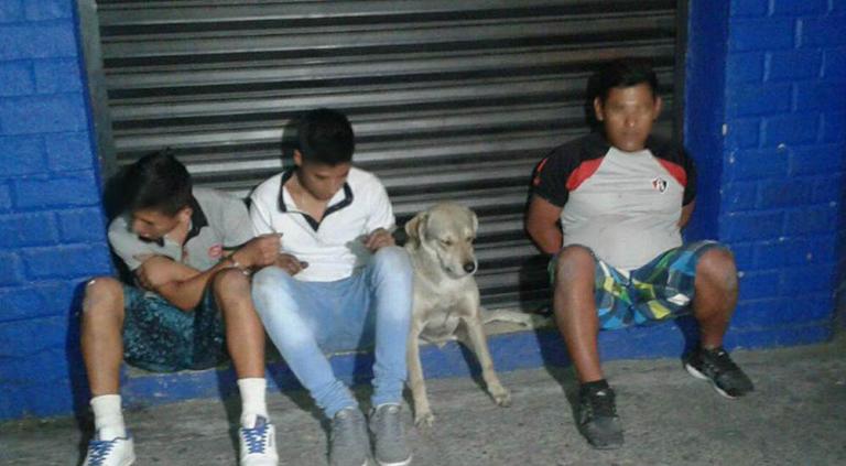 Detienen a perro con delincuentes en Guadalajara: Mira los mejores memes