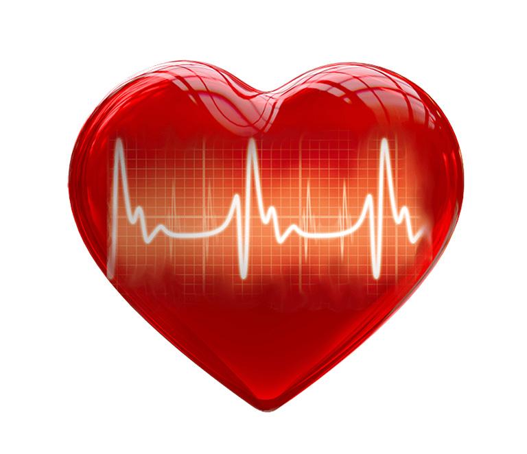 Los Beat's y el Corazón (BPM = Beat Por Minuto)