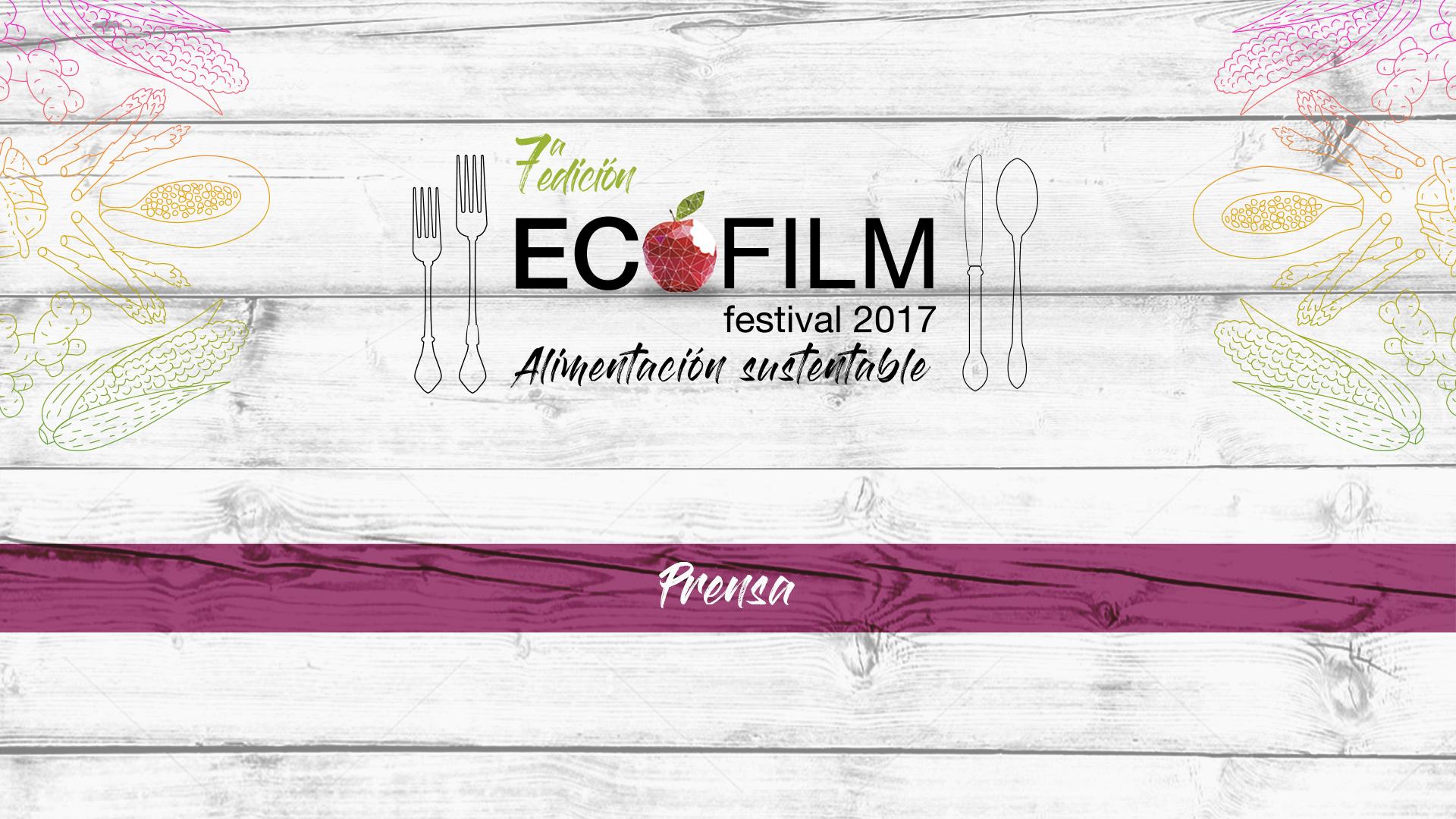 Ecofilm 2017, opinión