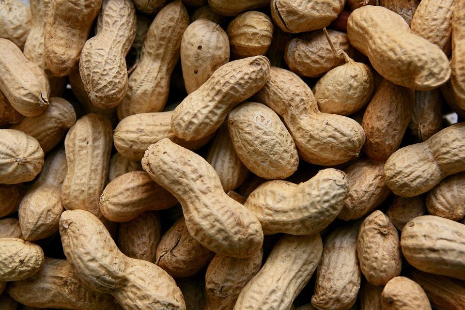 La importancia de las nueces en tu dieta